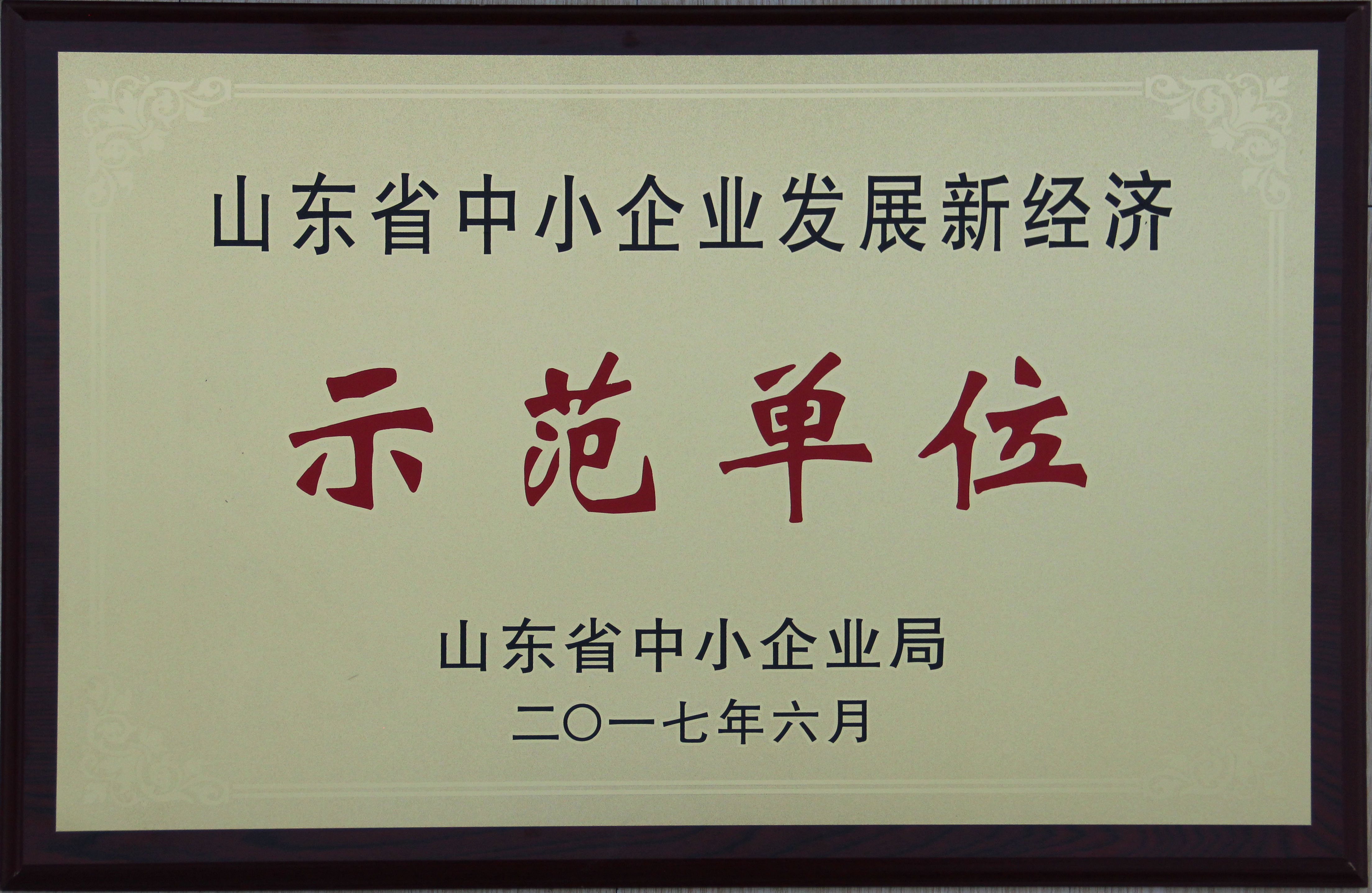 山东省中小企业示范企业